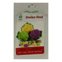 بذر گل کلم رنگی آذر سبزینه مدل A108