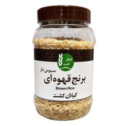 برنج قهوه ای سبوس دار گیلان کشت 500 گرمی