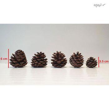 میوه تزیینی درخت کاج کد hyt5 مجموعه 5 عددی