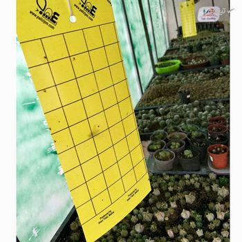کارت جذب کننده حشرات مدل YC7 بسته 7 عددی