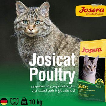 غذای خشک جوسرا مخصوص گربه مدل Josicat Poultry مقدار 10 کیلوگرم