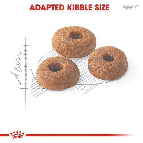 غذای خشک گربه رویال کنین مدل Regular Fit 32 وزن 400 گرم